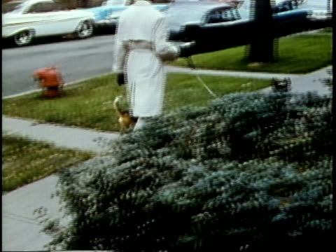 stockvideo's en b-roll-footage met 1963 ms pan black man walking two pet dogs in residential area / chicago, united states / audio - 1963