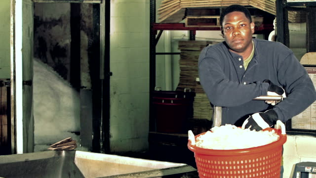 vídeos de stock e filmes b-roll de black man working in seafood processing plant - balde de gelo