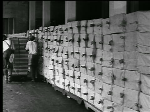 vídeos de stock, filmes e b-roll de b/w 1929 rear view black men push cart past stacks of bags of wax in factory / pan at end / news. - 1920 1929