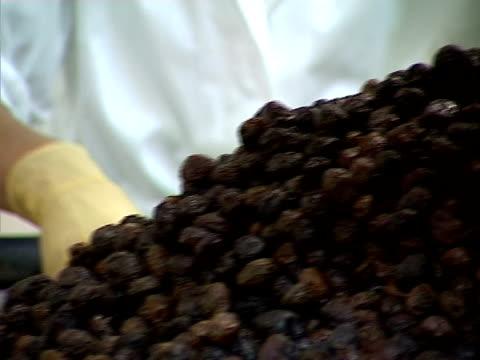black olive on conveyor line - black olive stock videos & royalty-free footage