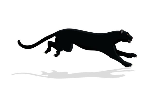 vídeos de stock e filmes b-roll de black panther animal run cycle animation - ciclo