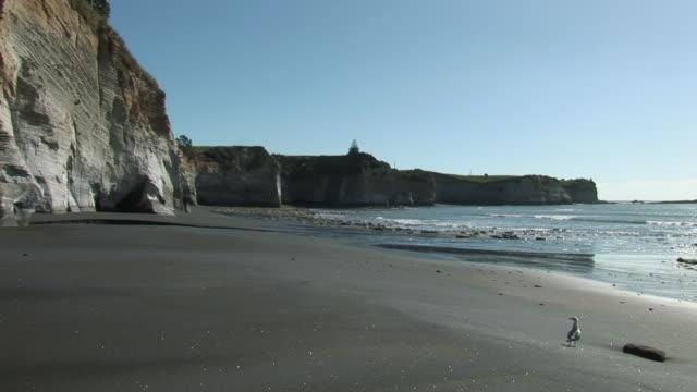 ws black sand and white cliffs at manukau harbor / taranaki, new zealand - harbour stock videos & royalty-free footage