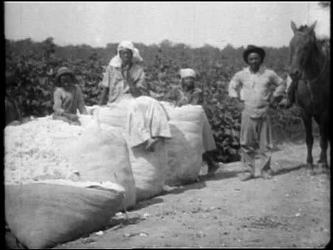 b/w 1920 black sharecropper family sitting on bales of cotton in field outdoors / southern us / doc. - picking stock videos & royalty-free footage