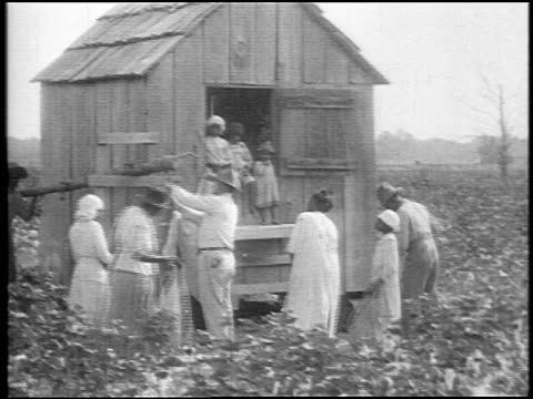 B/W 1920 Black sharecroppers packing up cotton to put in shed in field / Southern US / doc.