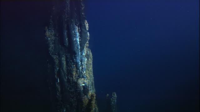 black smoker deep sea vent rises from ocean floor, mid atlantic ridge - tiefe stock-videos und b-roll-filmmaterial