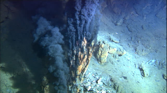black smoker deep sea vent rises from ocean floor, mid atlantic ridge - seabed stock videos & royalty-free footage