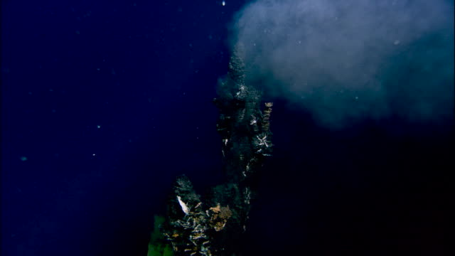 black smoker deep sea vent rises from ocean floor, mid atlantic ridge - ridge stock videos and b-roll footage