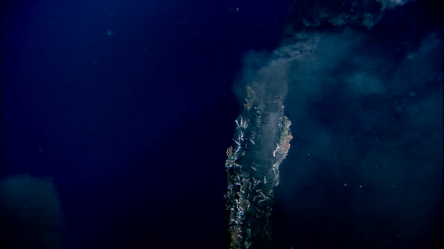 vídeos de stock, filmes e b-roll de black smoker deep sea vent rises from ocean floor, mid atlantic ridge - geologia