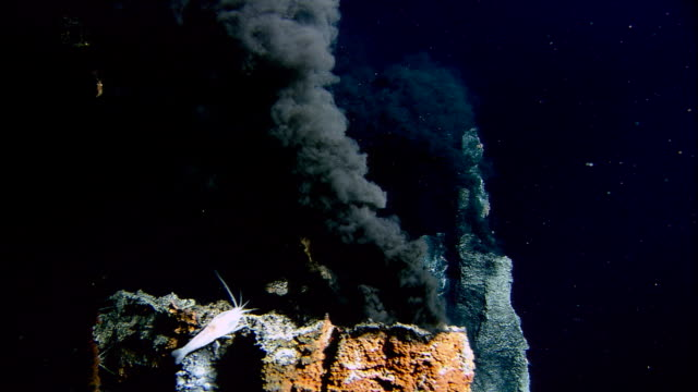 black smoker deep sea vents rise from ocean floor, mid atlantic ridge - undersea stock videos & royalty-free footage