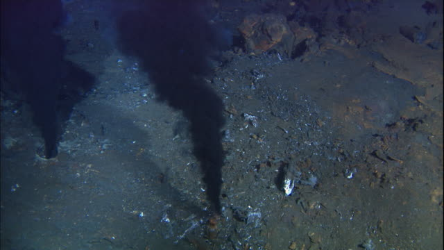 black smoker deep sea vents rise from ocean floor, mid atlantic ridge - seabed stock videos & royalty-free footage