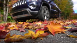 SLOW MOTION CLOSE UP Black SUV car drives on forest road swirling autumn leaves
