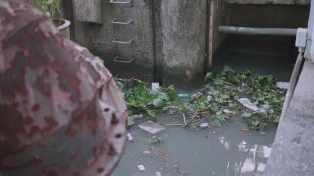 black water pollution, trash along polluted canel , bangkok. - bangkok stock videos & royalty-free footage