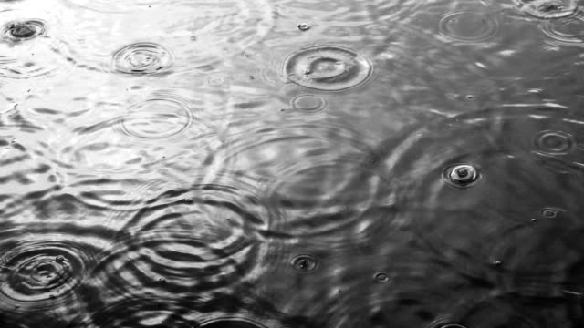 Black & white rain drops on water surface