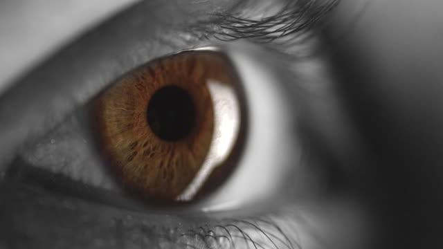 4K - Black & White with Coloured Iris