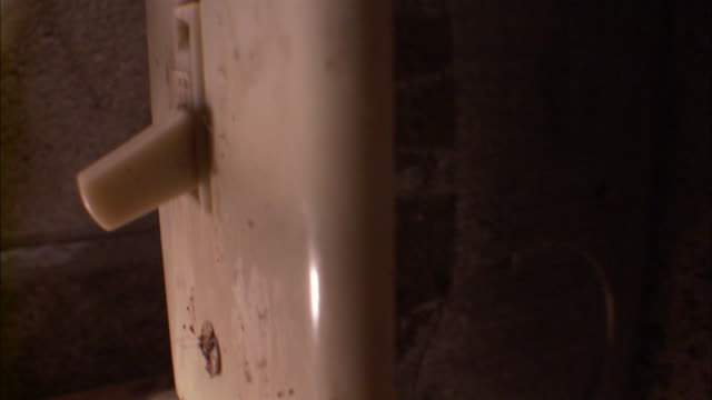 A black widow spider clings to the bottom of a light switch in a basement.