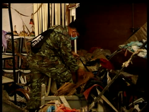 blair increases aid/ number of british dead so far announced; thailand: kho pi pi: gv soldier with sniffer dog searching debris for bodies side gv... - sonnenschirm stock-videos und b-roll-filmmaterial