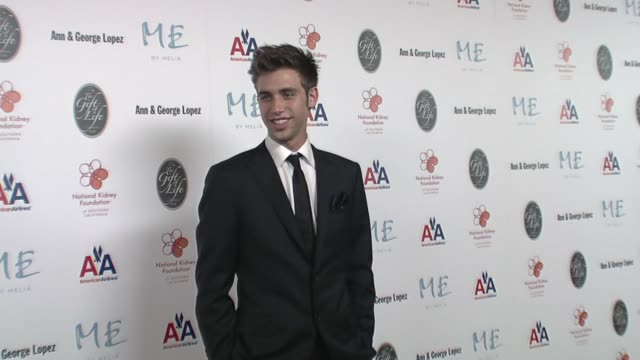 blake berris at the 29th annual the gift of life gala at the hyatt regency century plaza hotel in beverly hills, california on may 18, 2008. - hyatt regency stock videos & royalty-free footage