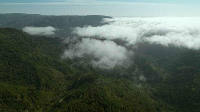 A blanket of clouds rolls in from the west, covering the evergreen forests of the Klamath Mountains.