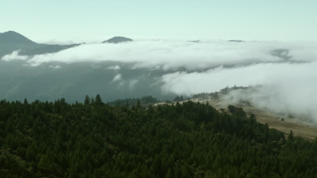 A blanket of fog hovers over mountains on California's North Coast.