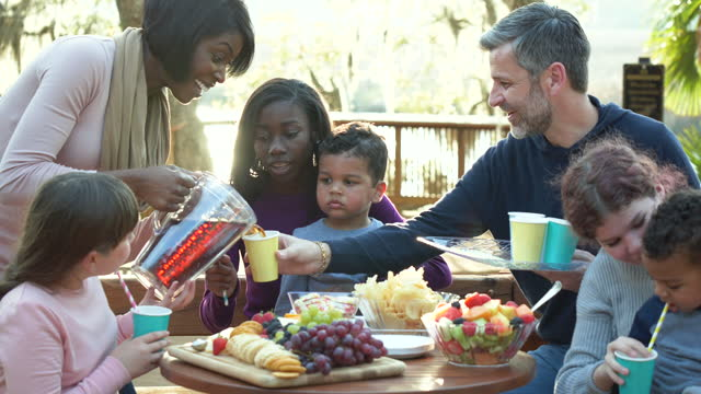 blended family with five children having a picnic - candid stock videos & royalty-free footage