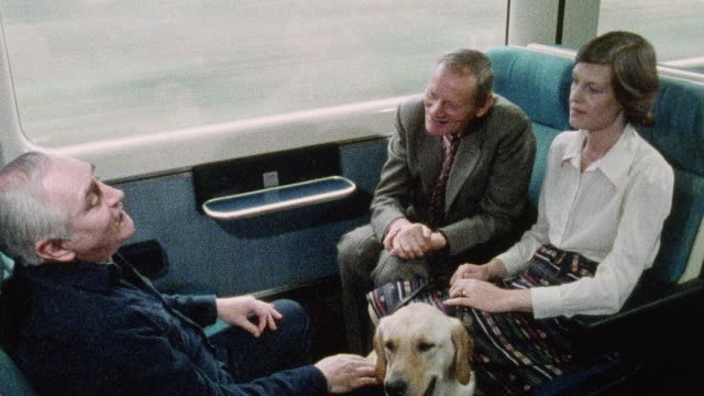 vídeos y material grabado en eventos de stock de 1978 ha blind passenger on a train sitting with her guide dog and a deaf passenger as another passenger is using sign language to assist their conversation / united kingdom - sordera