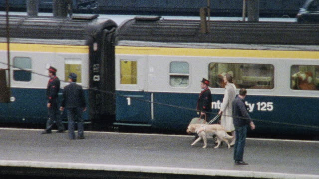 vidéos et rushes de 1978 montage blind passenger with guide dog being escorted on the station platform and taken to her seat / united kingdom - aveugle