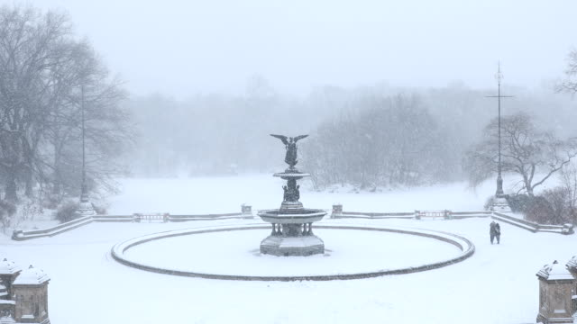 vidéos et rushes de blizzard à central park - central park manhattan