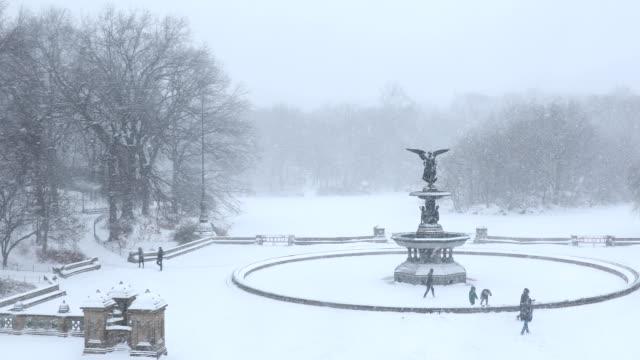 vídeos de stock e filmes b-roll de blizzard in central park - fonte bethesda
