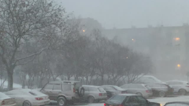 blizzard in europa - grau stock-videos und b-roll-filmmaterial