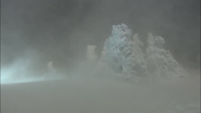 blizzard sweeps past frozen trees on mount zao, soft rime,  'ice monsters'  mount zao, yamagata - blizzard stock videos & royalty-free footage