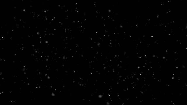Blizzard (loopbare)