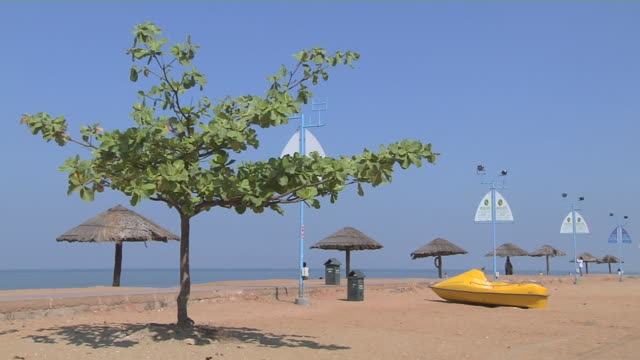 block shot cherai beach cochin kerala india - tetto di paglia video stock e b–roll