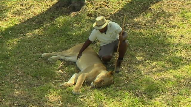 Block Shot Lion and Tamer Mauritius