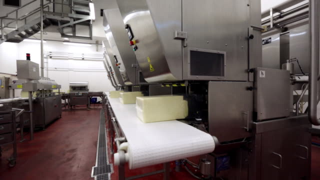 vidéos et rushes de blocks of cheese being packaged into plastic and moving along a production line ready for maturating - cheese