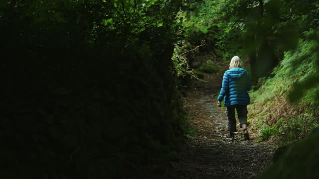vidéos et rushes de blond mature woman hiking through magical forest pathway in the mountains of snowdonia national park, wales - 60 64 ans