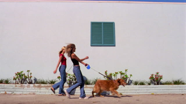 pan blond teen girl being pulled by dog on leash past building / second girl following - pulling stock videos & royalty-free footage