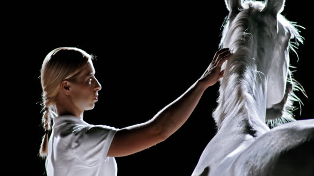 slo mo ld blonde woman caressing white horse - black hairy women stock videos & royalty-free footage