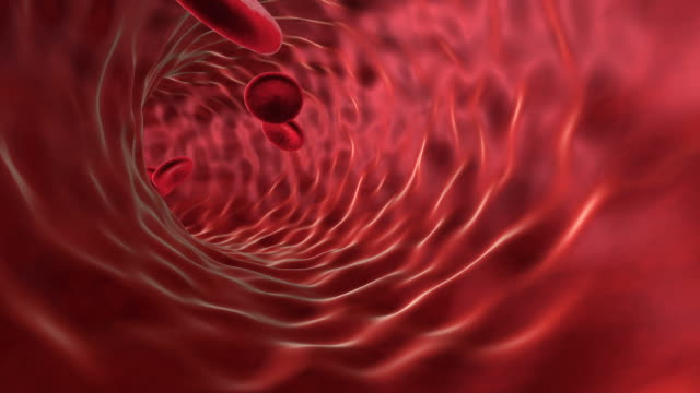 blood cell - artery stock videos & royalty-free footage