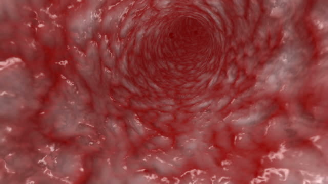 blood cells moving in artery - artery stock videos & royalty-free footage