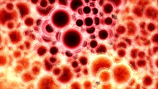 Blood cells moving