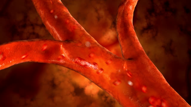 blood cells pulsing down artery - artery stock videos & royalty-free footage
