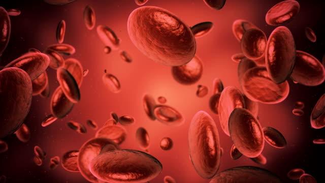 血液細胞 - ピロリ菌点の映像素材/bロール