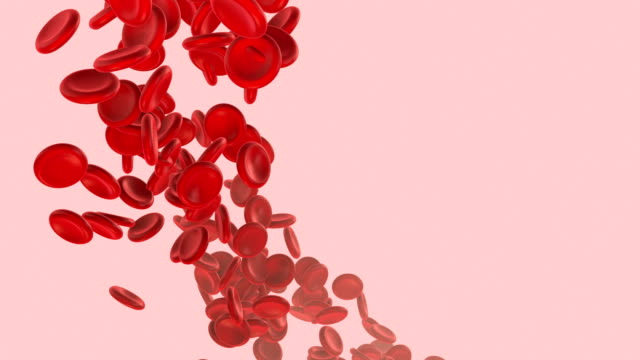 blood cells - venule stock videos & royalty-free footage