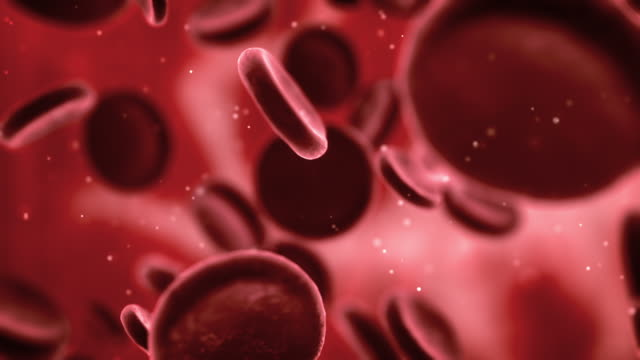 blood cells (loopable) - artery stock videos & royalty-free footage