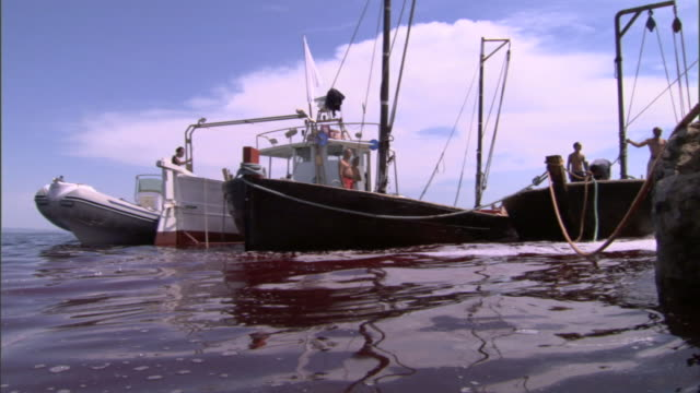 blood colors the water red near fishing boats in the mediterranean sea. - blood stock videos & royalty-free footage