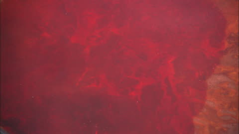 blood disperses in a basin of water. - blood 個影片檔及 b 捲影像