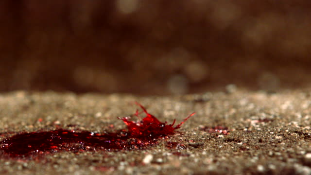 blood dripping of a chicken on the floor in manila, philippines - sand stock videos & royalty-free footage