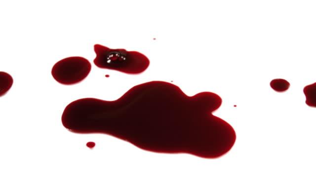 vídeos de stock e filmes b-roll de gotejamento de sangue para uma gargalhada - sangue