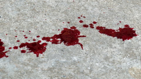 blood drop on the floor. - gory of dead people stock videos & royalty-free footage