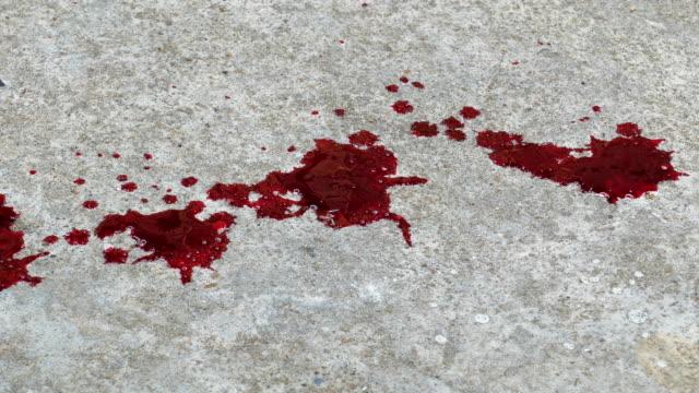vídeos de stock, filmes e b-roll de gota de sangue no chão. - cadáver